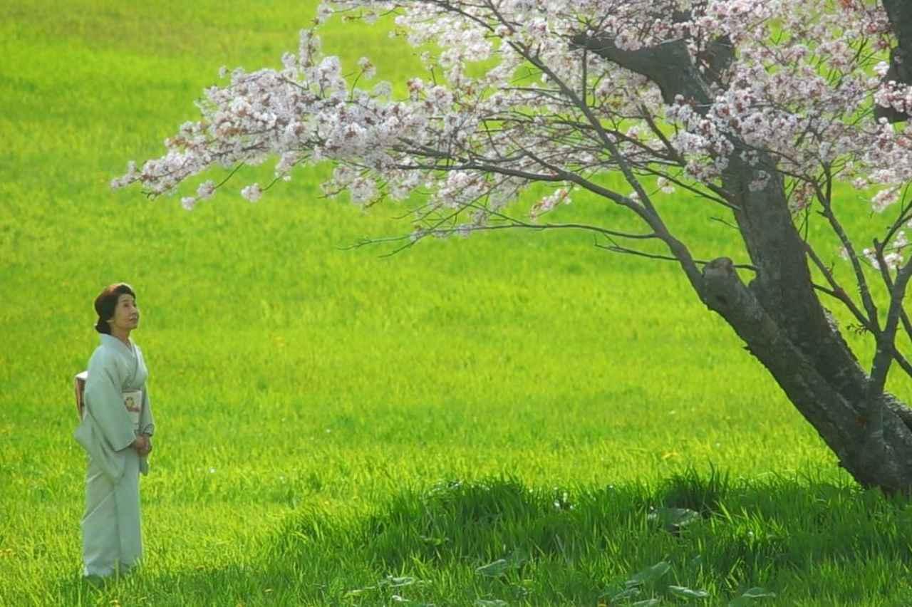 北海道の美しい自然を封じ込めた映画『モルエラニの霧の中』が、サプライズライブ